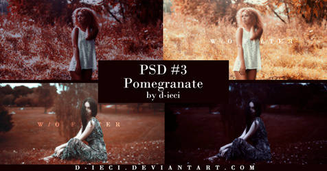 PSD #3 : Pomegranate