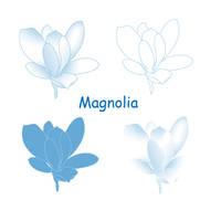 Magnolia Brush Set