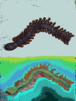 Fractal Worm