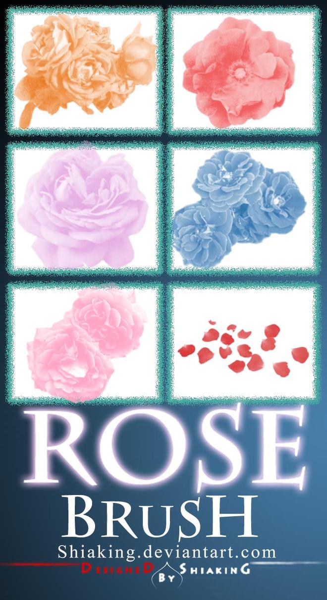 6 Brush Rose PS by shiaking