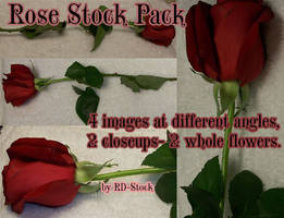 Rose Stock Pack by RD-Stock