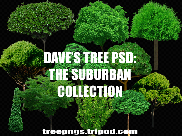 Dave's Trees PSD