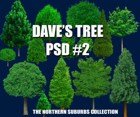 Dave's TREE PSD 2