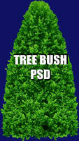 Tree Bush PSD
