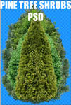 TREE SHRUBS PSD