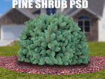 PINE TREE SHRUB PSD
