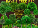 Daves Tree PSD:  Beverly Lawns