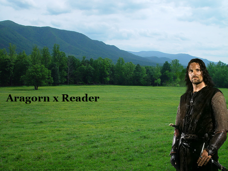 Aragorn x Reader: Chapter 2 by captainamelialover on DeviantArt