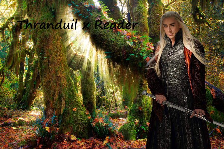 Thranduil x Reader: Chapter 5 by captainamelialover on DeviantArt