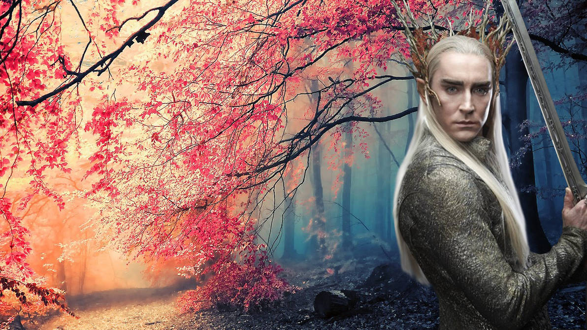 Memories to be Healed Thranduil x Reader:Chapter 1 by