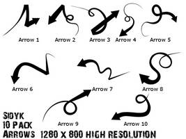 Sidyk 10 pack Arrows by Sidyk