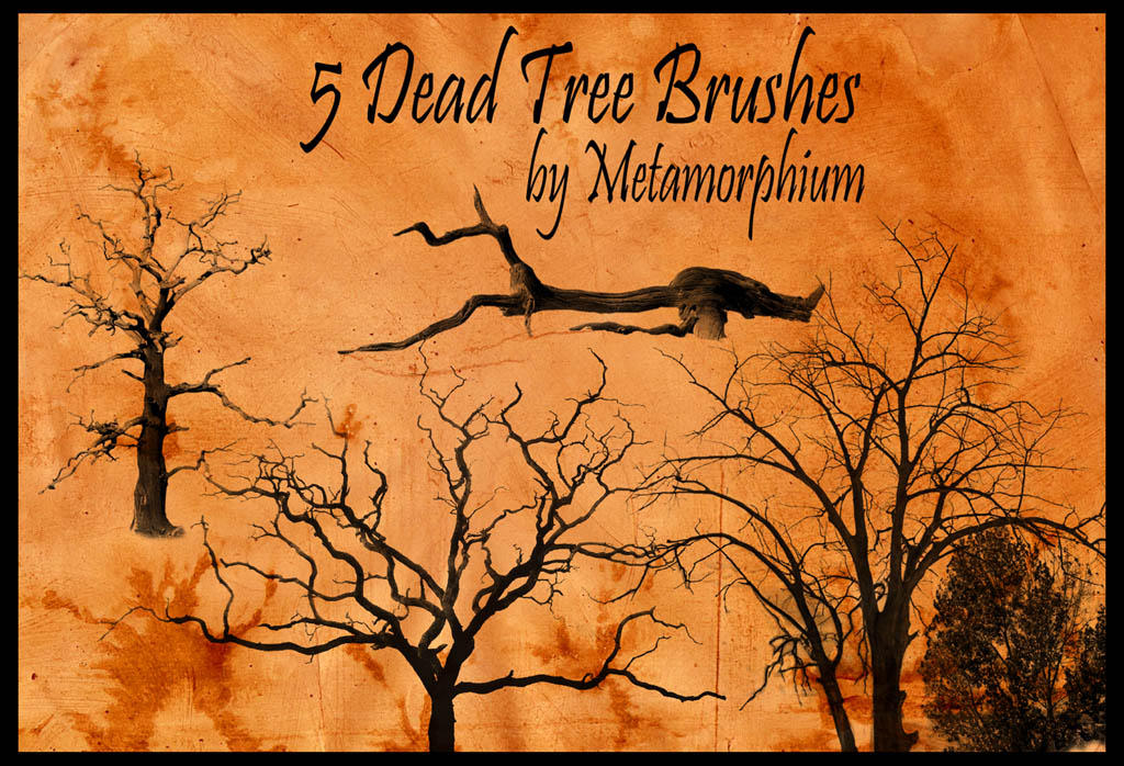 5 Dead Tree Brushes by Metamorphium