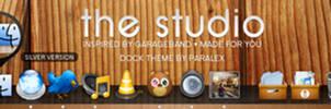The Studio - Leopard Dock by paralexLX