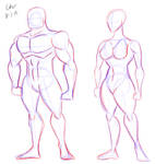 Male and Female Anatomy Practice (CRITIQUE)