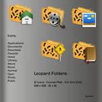 Leopard Folders