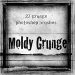 Moldy Grunge Brushes