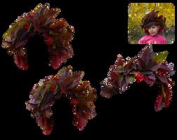 Autumn wreath by Vladlena111