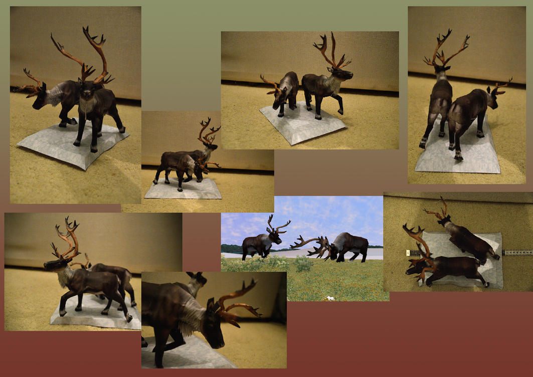 Zoo Tycoon Paper Collection - Caribou by DrWheelieMobile