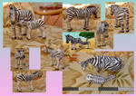 Zoo Tycoon Paper Collection - Common Zebra
