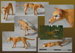 Zoo Tycoon Paper Collection - Thylacine