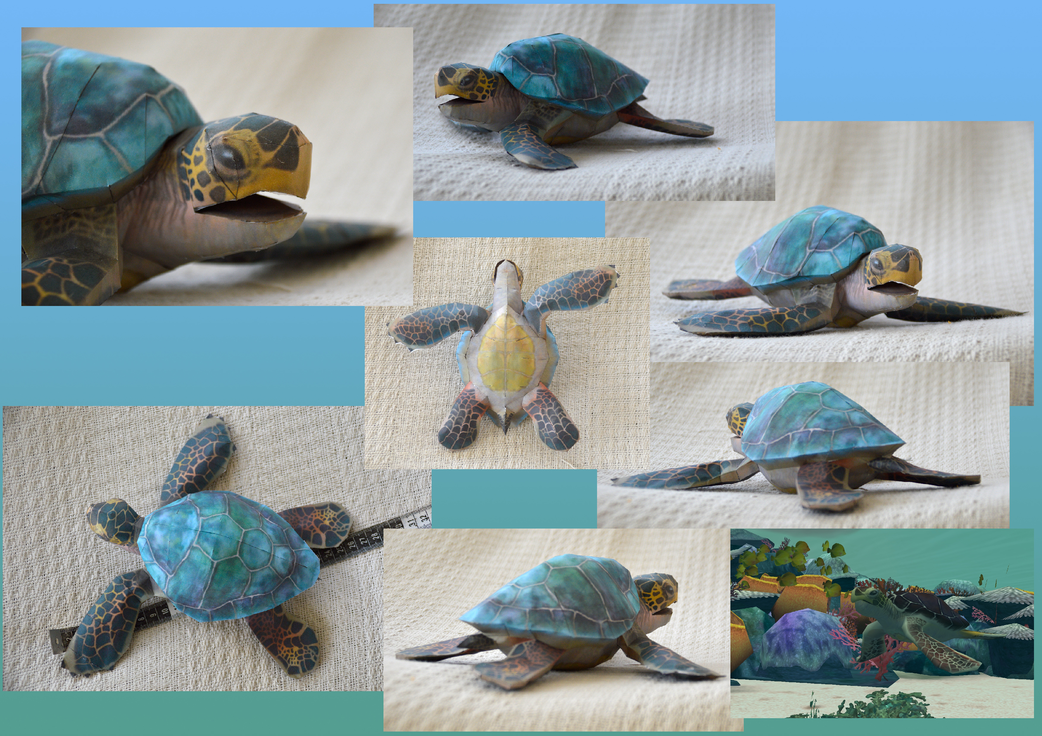Zoo Tycoon Paper Collection - Green Sea Turtle by DrWheelieMobile
