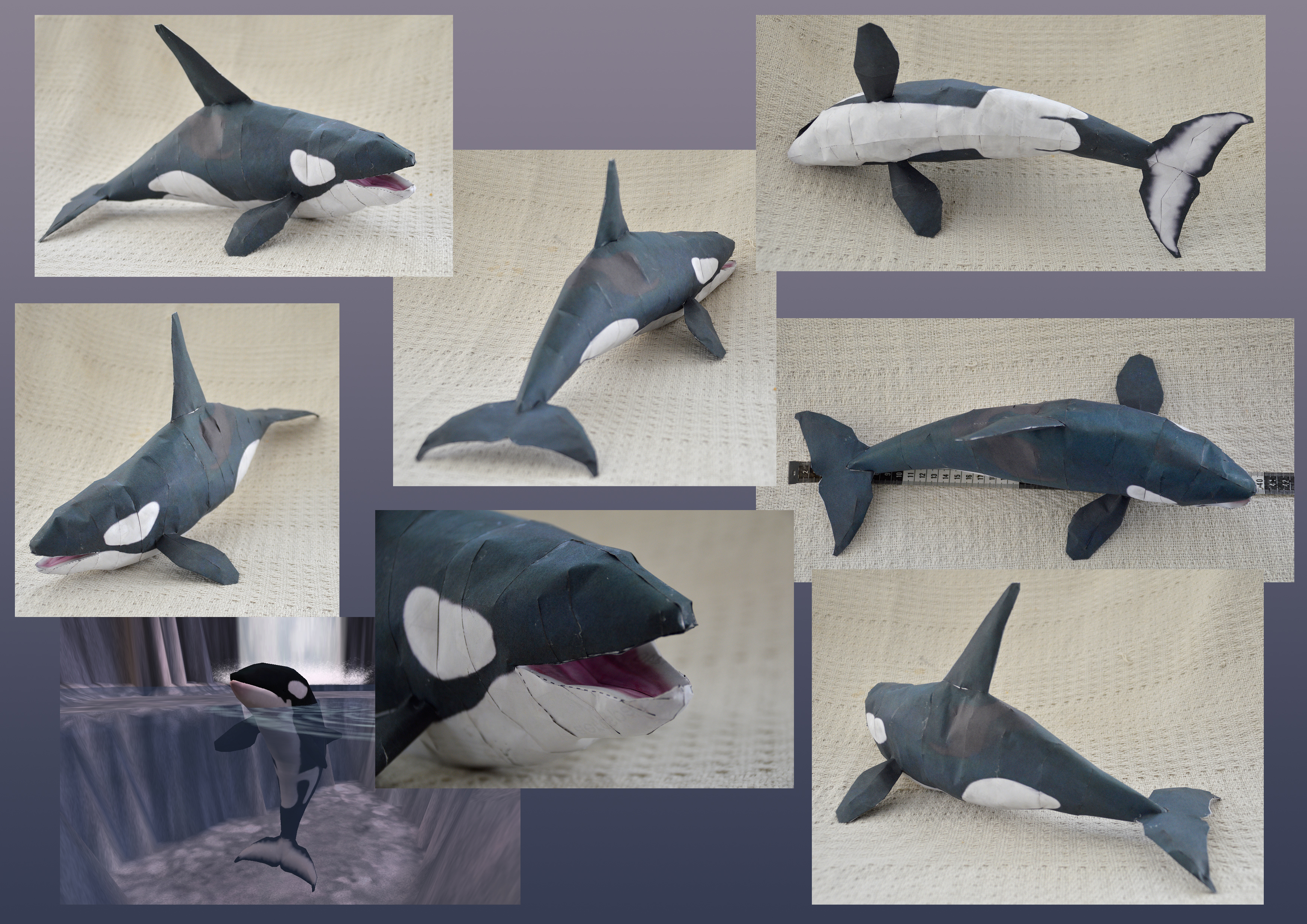 Zoo Tycoon Paper Collection - Orca by DrWheelieMobile