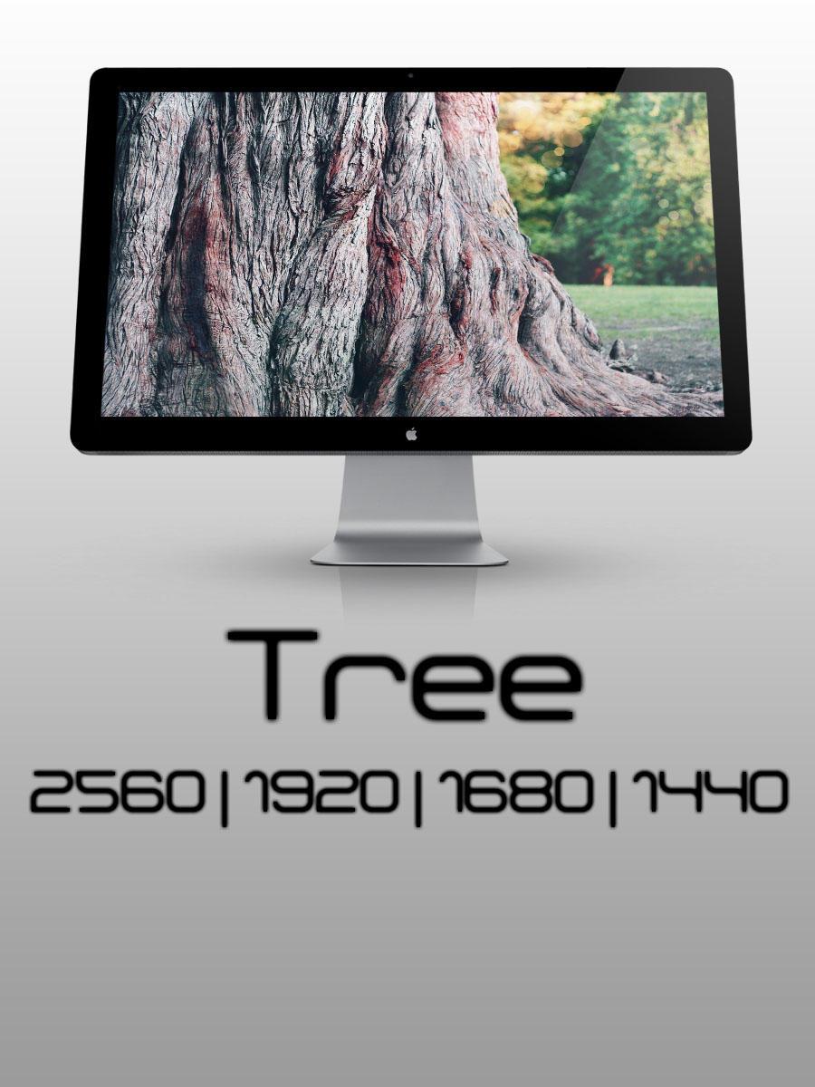 Tree by Sashaa812