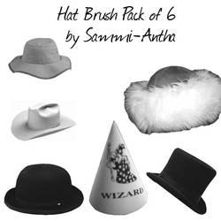 Hat Brush Pack of 6