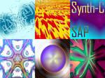 Synth-C - SAP