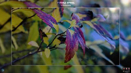 Purple Spiral by spiraloso