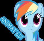 It's Okay Rainbow Dash...