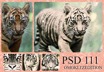 PSD 111 - OmgKltzEdition