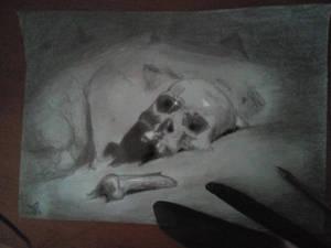 Pierwsza ilustracja do mojej trzeciej ksiazki