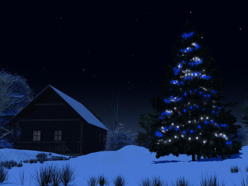 Christmas Tree At Night By Island Dog On Deviantart