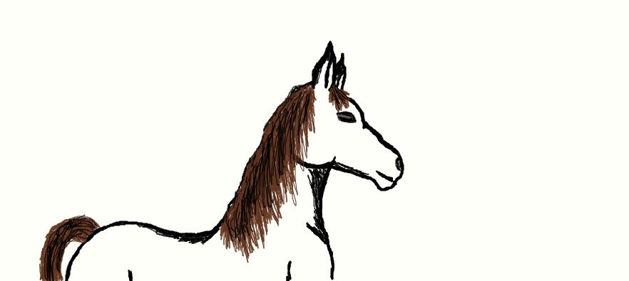 horse by wolvesrock808
