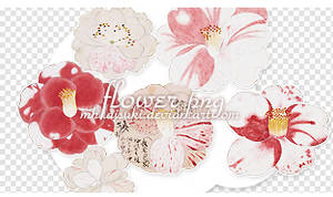 Flower png x5