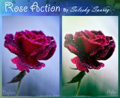Rose Action by Sireysi