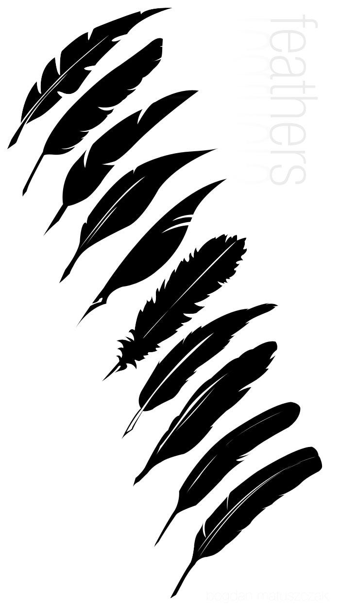 Vector Feathers -- HL by halfliquid