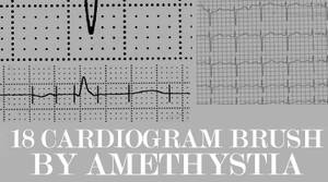 cardiogram 18 brushes set