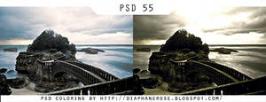 [ 55 ] FREE PSD COLORING