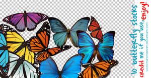 10 Butterfly Stocks