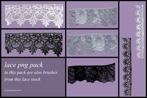 lace png and lace brushes by marjoleinthewitch