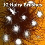 12 Hairy Brushes
