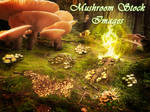 30 Mushroom Stock Images by XResch