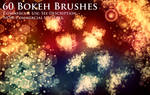 60 Bokeh Effect Brushes