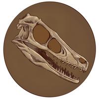 Raptor by virgiliArt