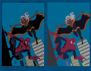 Storm and Spiderman Cover - Flats