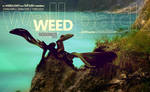 WEED -wall.pack-