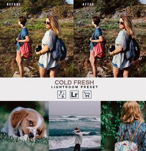 Cold fresh - Lightroom Preset