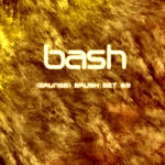 Bash -- Grunge Brush Set_9
